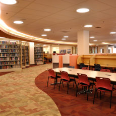 DU Anderson Academic Commons