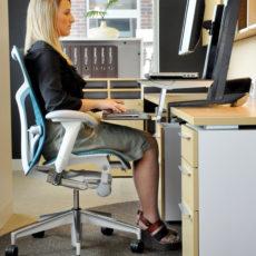Ergonomic Furniture Evaluation