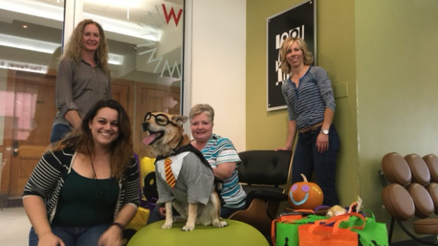 Workplace Resource in Colorado Springs Fills Bags of Treats for the Humane Society